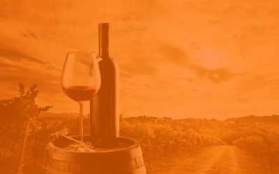 Nueva Ruta del Vino